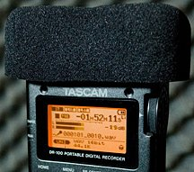 Tascam DR-100 windscreen