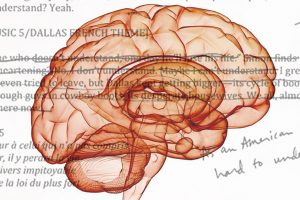 Cultivating the Editor in Your Brain