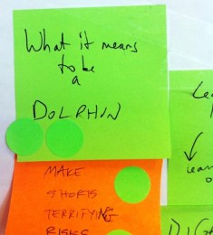 Poster board note: What it means to be a dolphin