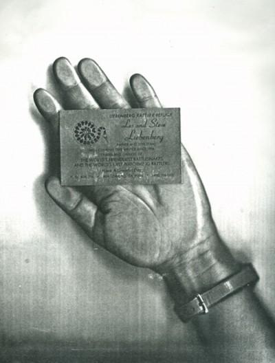 hand liebenberg photo