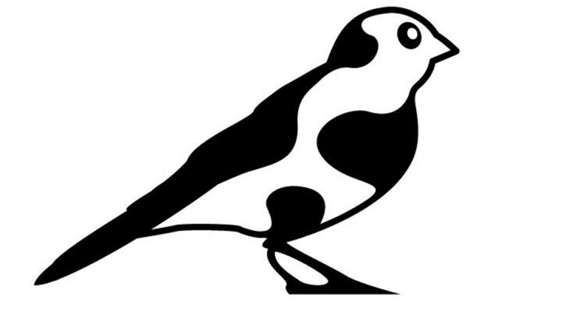 cowbird-721x440