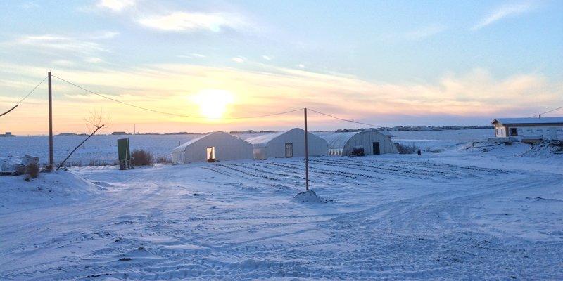 photo of farm in winter