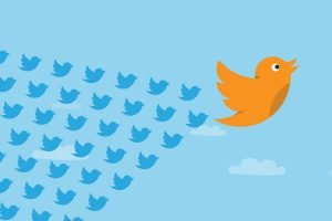 Twitter Vox