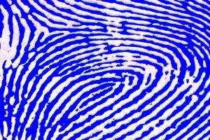 An Editor's Fingerprints